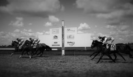 dalby horse racing